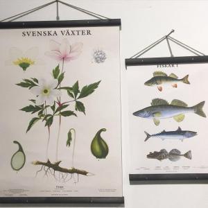 Planschhängare Svart - Hus-modern.se